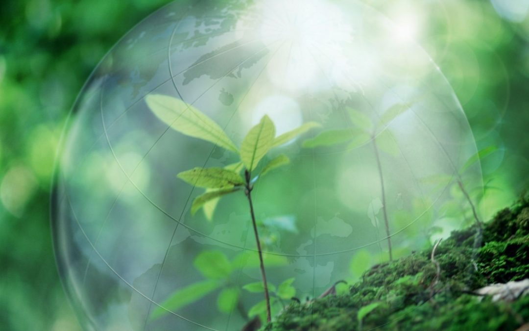 UNP Initiatives 2021: Environmental and Climate Sustainability of the Eastern Partnership
